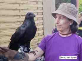 Nat-Raven-side_ed